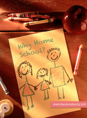 Why Home School? Five great reasons from flandersfamily.info