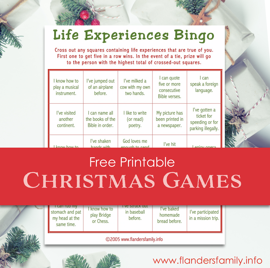 Christmas Party Ice Breaker - Life Experience Bingo
