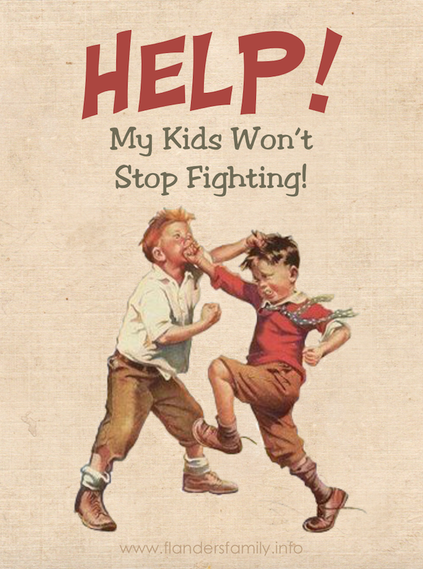 Q&A: My kids are so mean to each other! Here are 6 Tips to Keep the Fighting at Bay, from www.flandersfamily.info