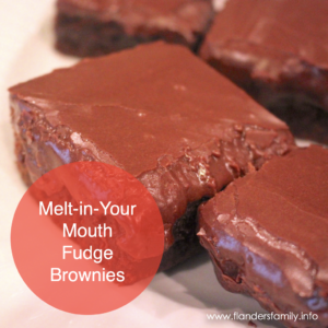 Flanders Family Favorite Recipes - Melt-in-your-Mouth Brownies