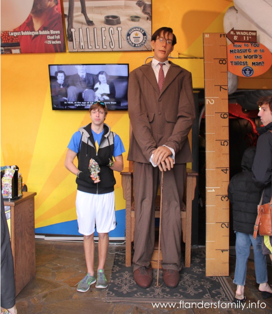 Ripley's Guinness World of Records Museum
