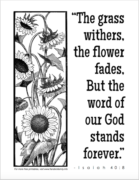 Faded Flowers And Withered Grass Coloring Page Flanders Family Rhflandersfamilyinfo: Coloring Pages Of Grass And Flowers At Baymontmadison.com