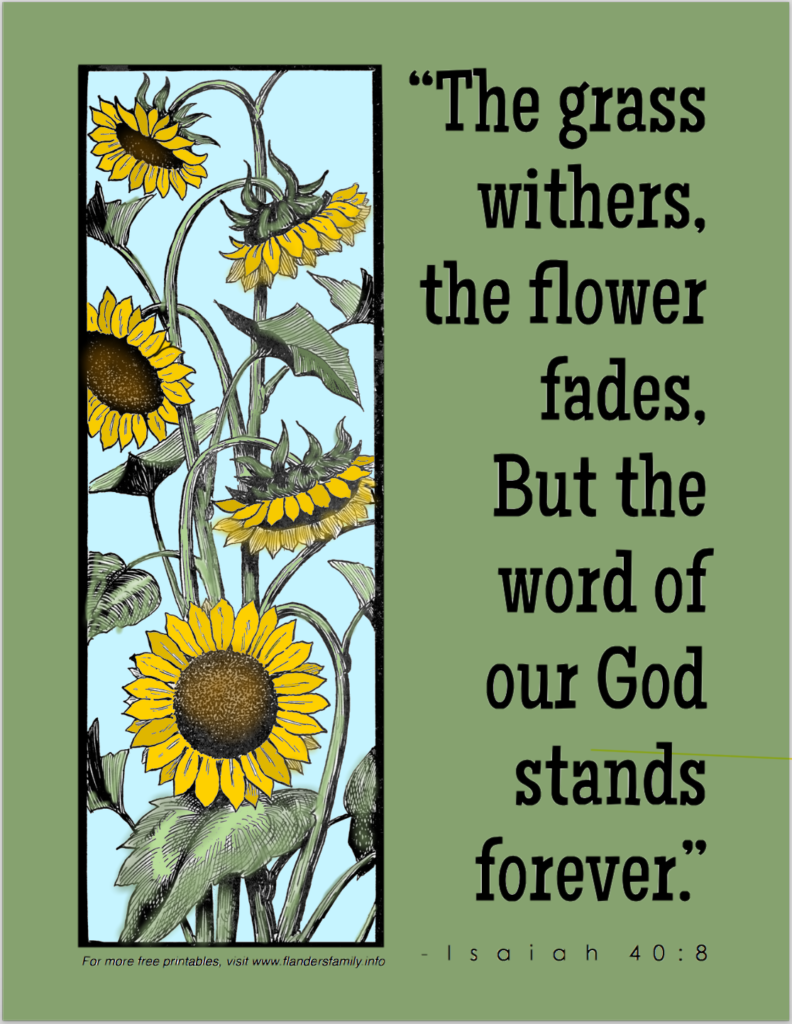Faded Flowers And Withered Grass Coloring Page