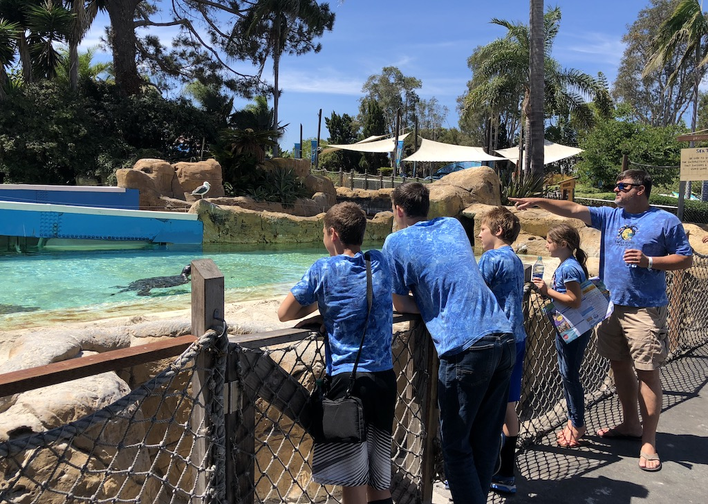 50 Fun Ideas for Spring: Go to the Zoo