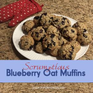 Scrumptious Blueberry Oat Muffins