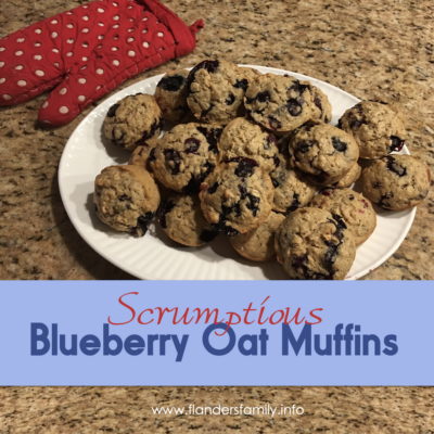 Blueberry Oat Muffins – Moist & Delicious!