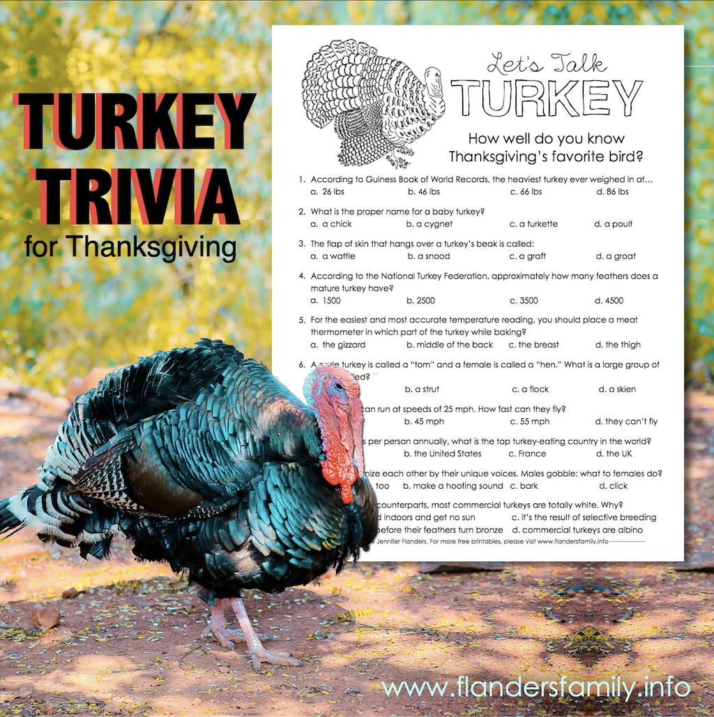 Let's Talk Turkey Trivia Test