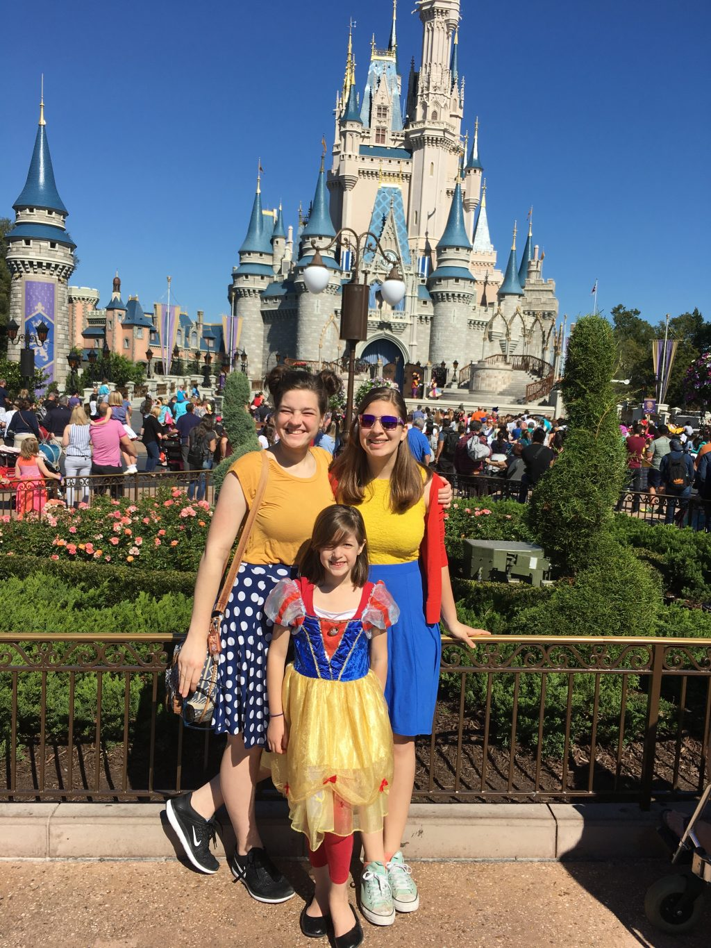 Flanders Family at Disney World
