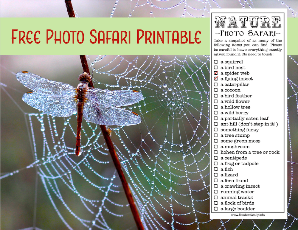 Free Photo Safari Printable