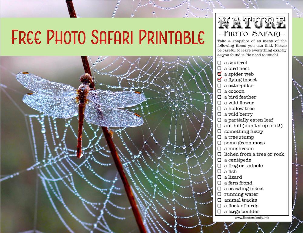 Free Photo Safari Printable
