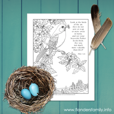 Look at the Birds Coloring Page