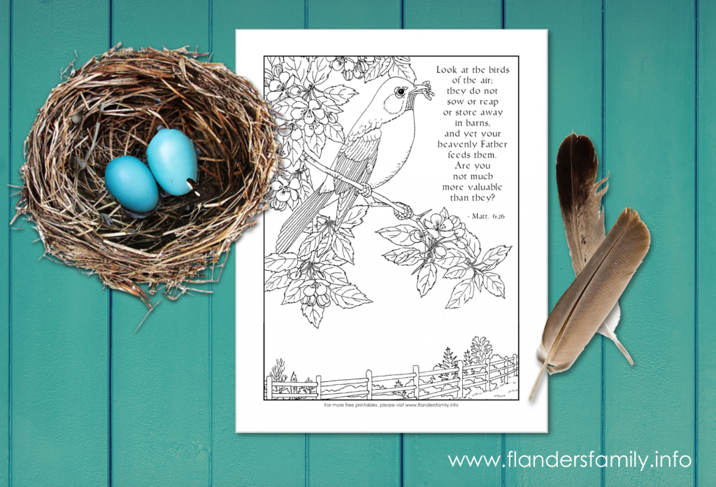 Look at the Birds (free printable coloring page from www.flandersfamily.info)