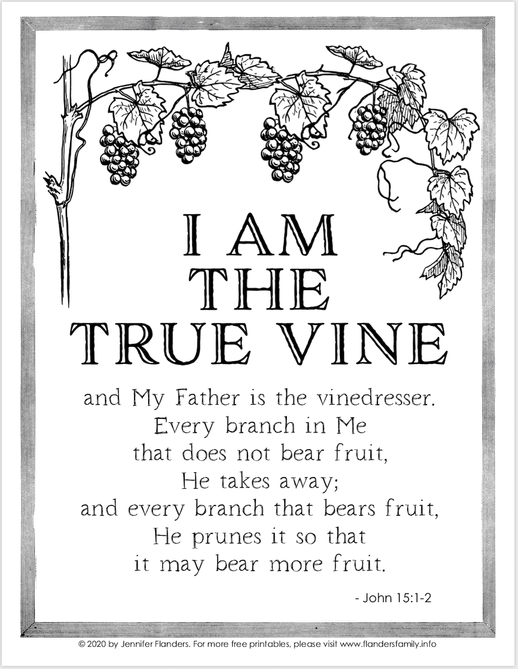 I Am the Vine Coloring Page