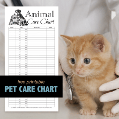 Animal Care Chart - IG