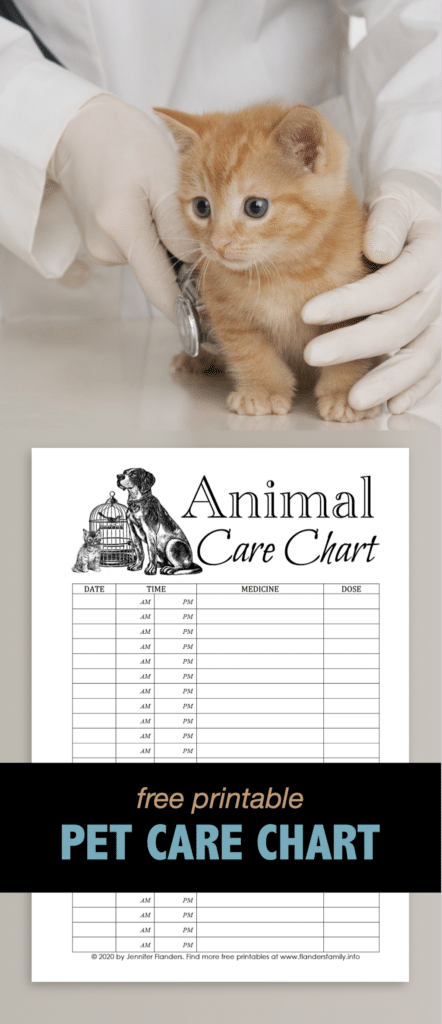 Animal Care Chart - Pinterest