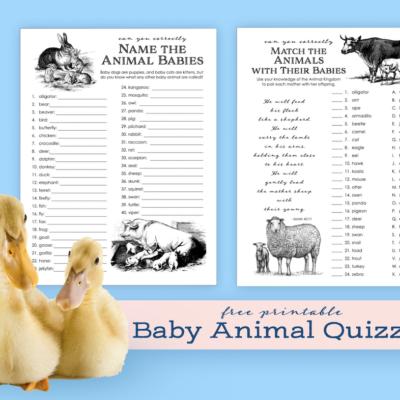 Animal Baby Name Games
