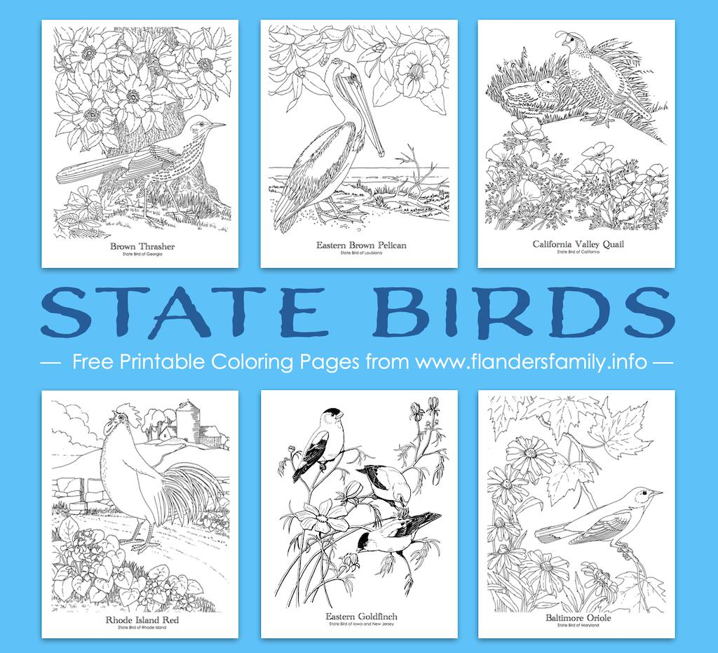April Holidays - Audubon Day