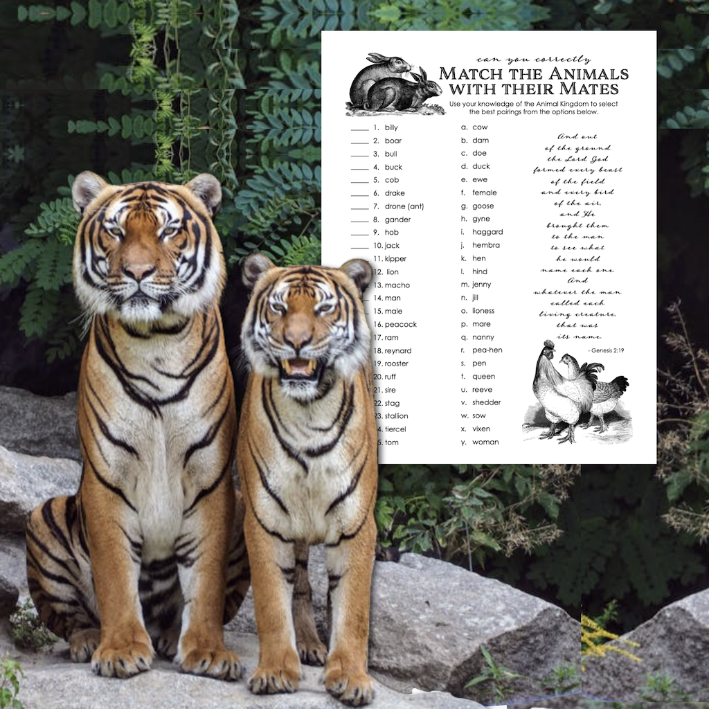 Animal Mates Matching Quiz
