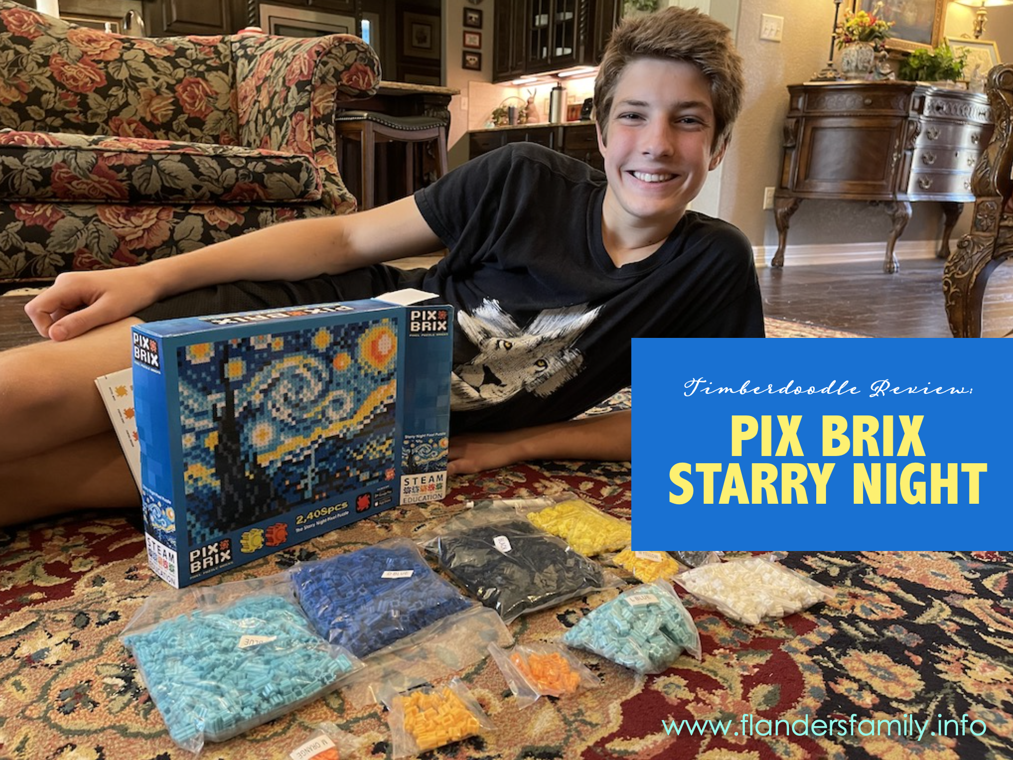 Pix Brix Starry Night Review
