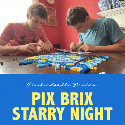 Pix Brix Starry Night