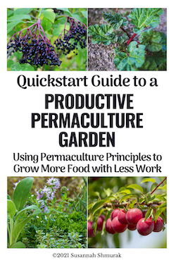 Atomic Habits and Productive Permaculture Garden