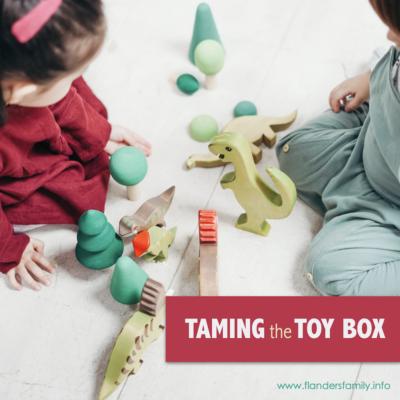 Taming the Toy Box: Organization Tips