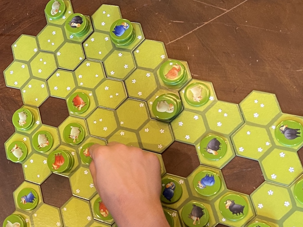 Close up of Game Board