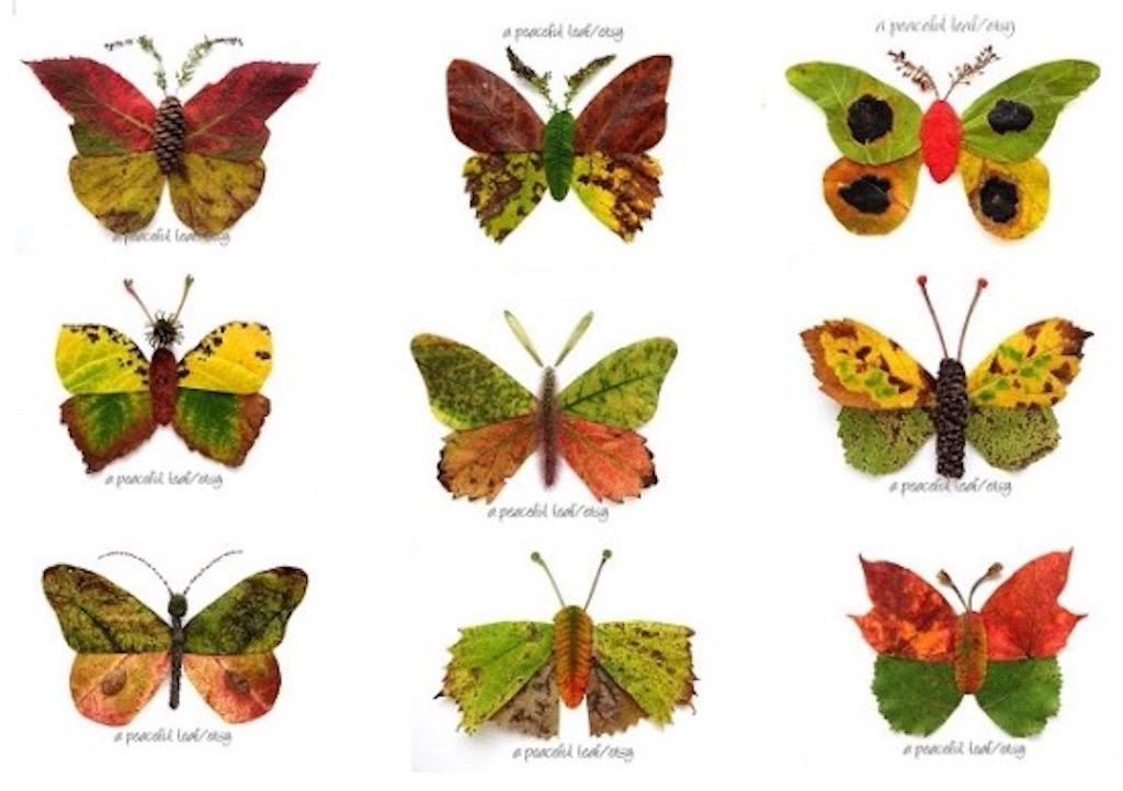 Leaf Butterflies